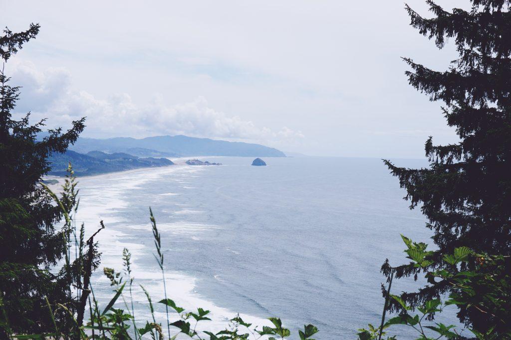 041-PacificCoast (Priime Lofoten)